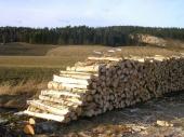 עץ להסקה בגליל העליון